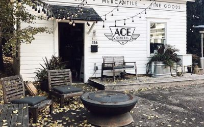Shop and Share: Ace General Store – Excelsior, MN