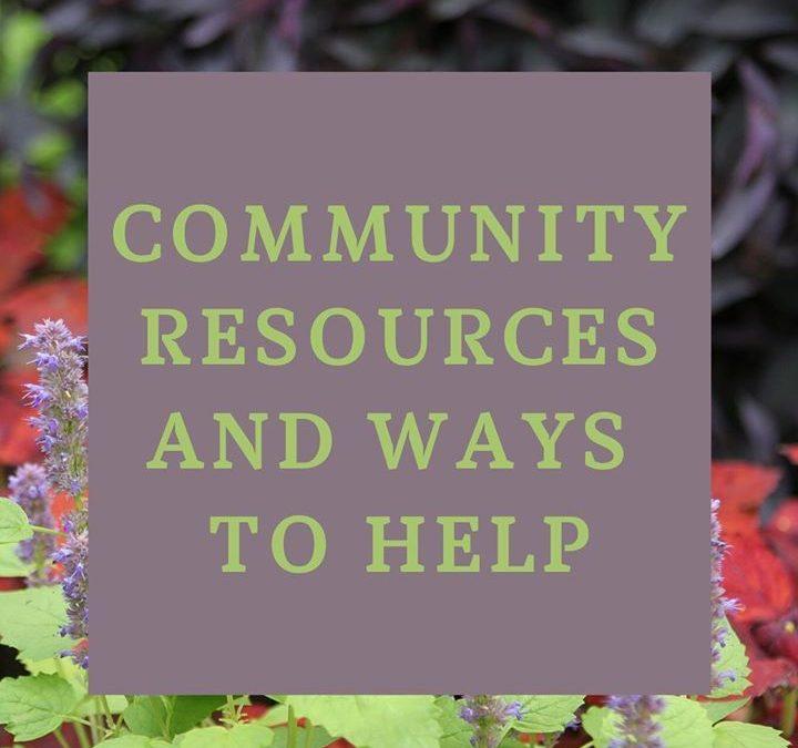 Healing Community: Community Resources & Gardens – Minneapolis